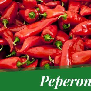 Quale peperoncino coltivare? Guida pratica – e veloce – alla scelta.
