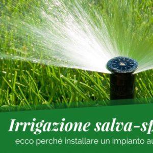 Irrigazione intelligente e salva-sprechi: ecco perché installare un impianto d'irrigazione automatico