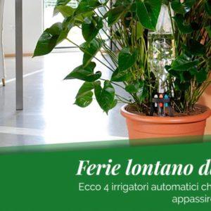 4 irrigatori automatici che non faranno appassire le tue piante mentre sei in vacanza