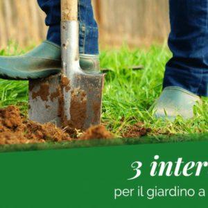 Dicembre: ecco cosa puoi fare per il tuo giardino
