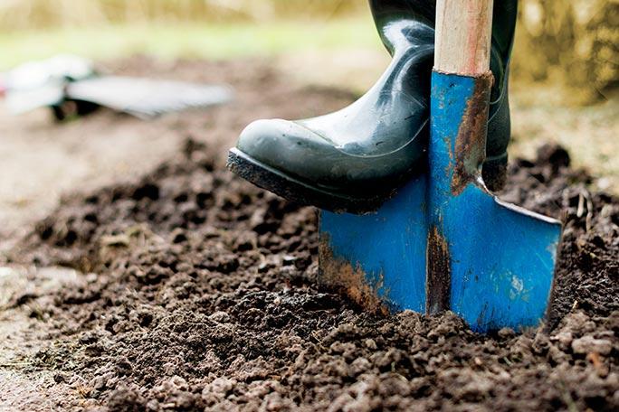 garden-winter-preparation