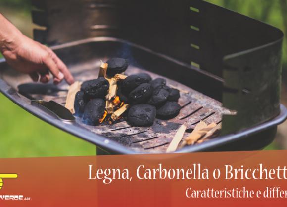Legna, Carbonella o Bricchetti? Caratteristiche e differenze